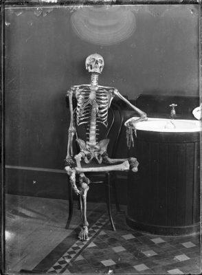 esqueleto-articulado.jpg