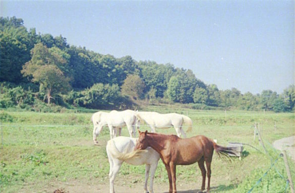 Foto de Blai Marginedas